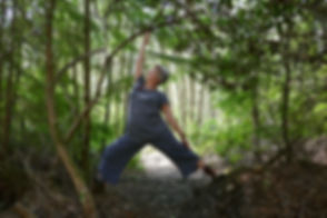 Page Image - In Woods.jpg