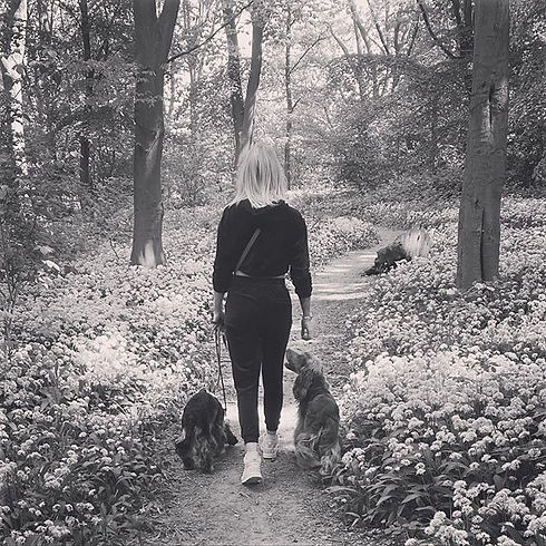 Sometimes a walk in the woods is all you need!  People often forget that training has to b