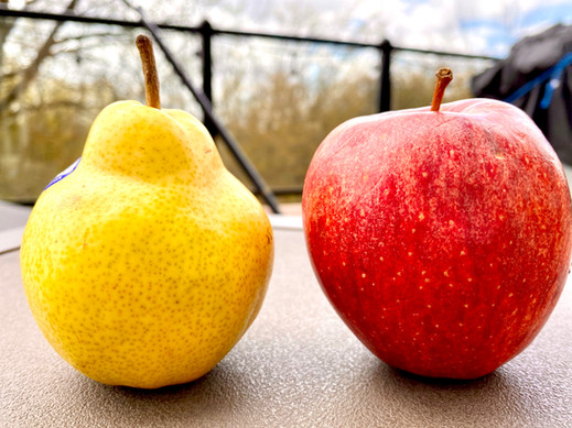 The Two Fruits