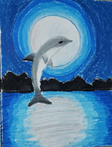 Dolphin in Moon