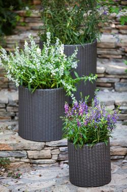 KETER-Cylinder Planters