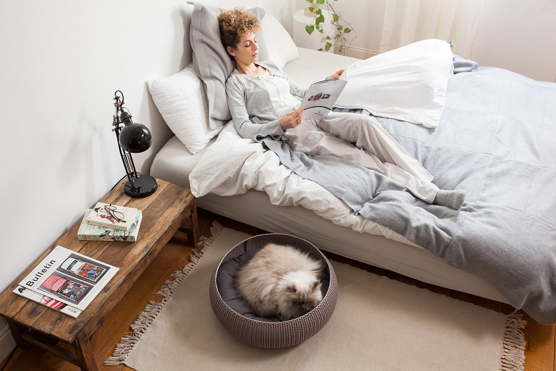 CURVER-Cozy Pet bed