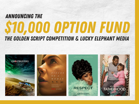 Announcing the $10,000 Guaranteed Option Fund