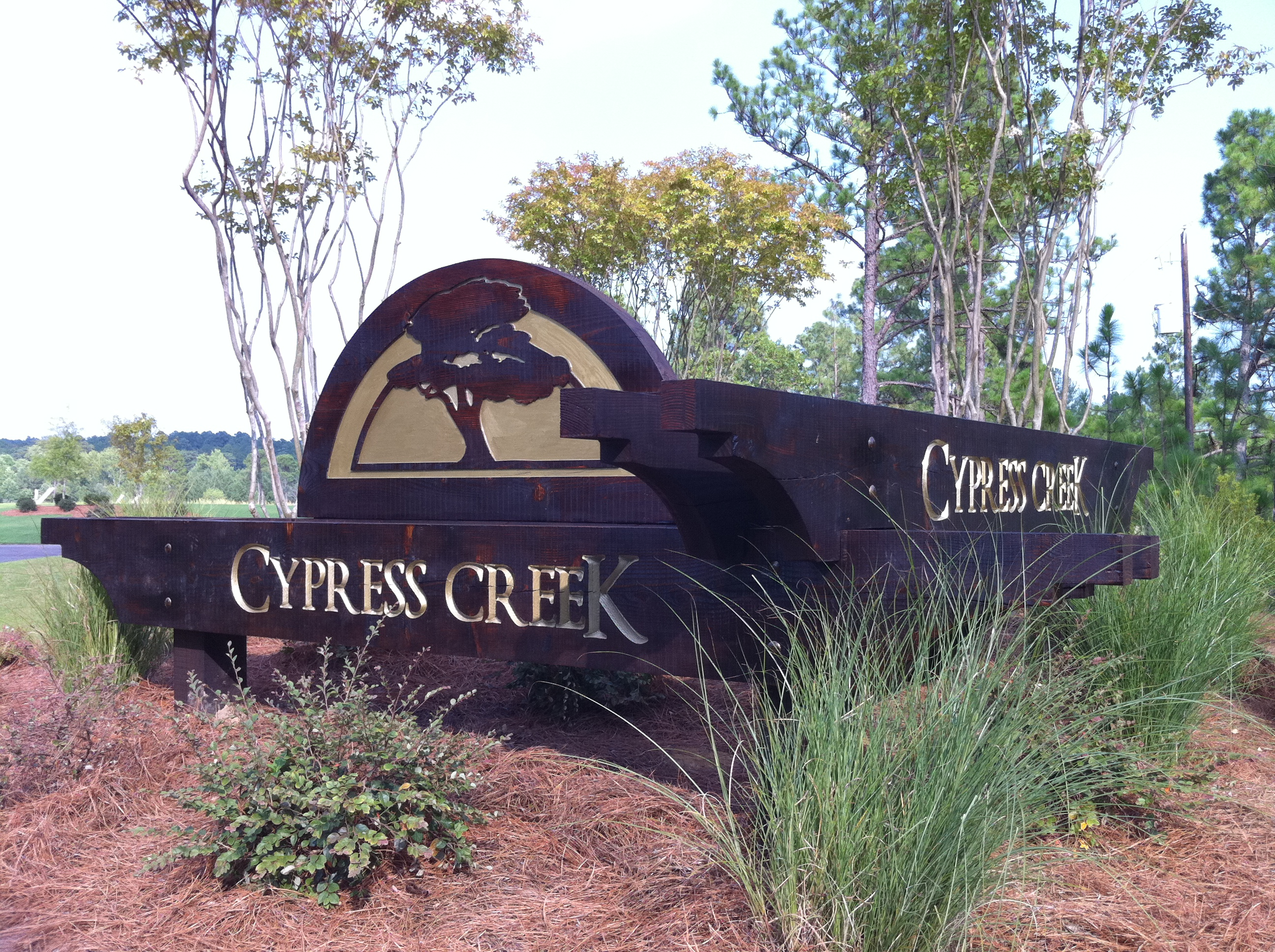 Cypress Creek_1