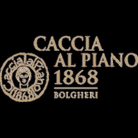 CACCIA AL PIANO