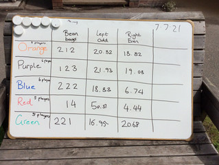 Exciting Maths in Oak Class