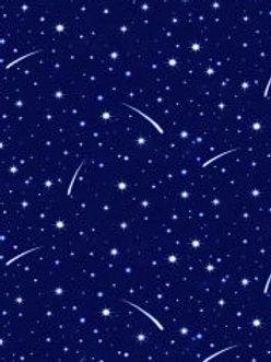 Lewis & Irene  - Tomten's Christmas - Starry Winter Sky