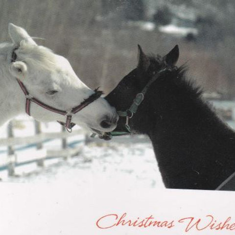 Christmas kisses - Pack of 10 cards