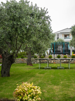Pachis Suites Outside-5054.jpg