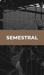semestral.png