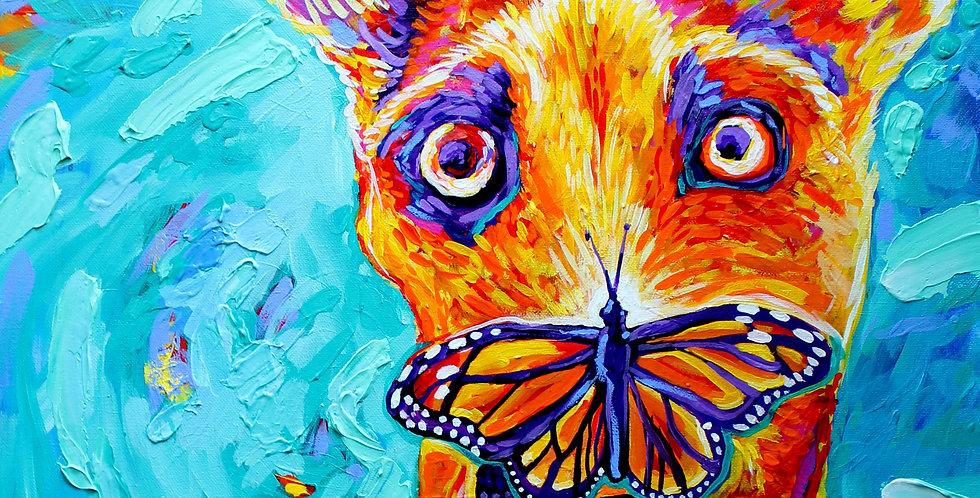 Butterfly Vs. Dog