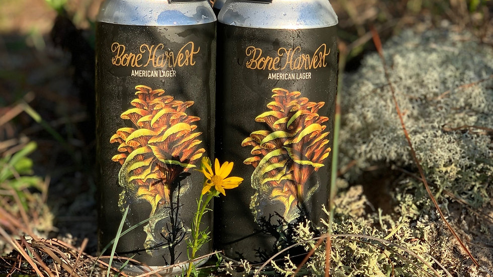 Bone Harvest | American Lager | 4-pack