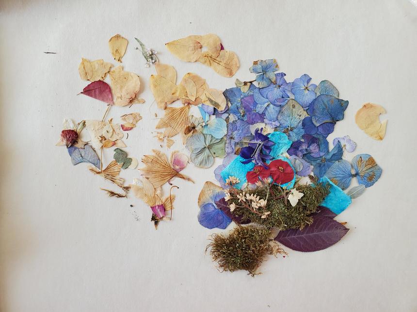 Press Flower Art