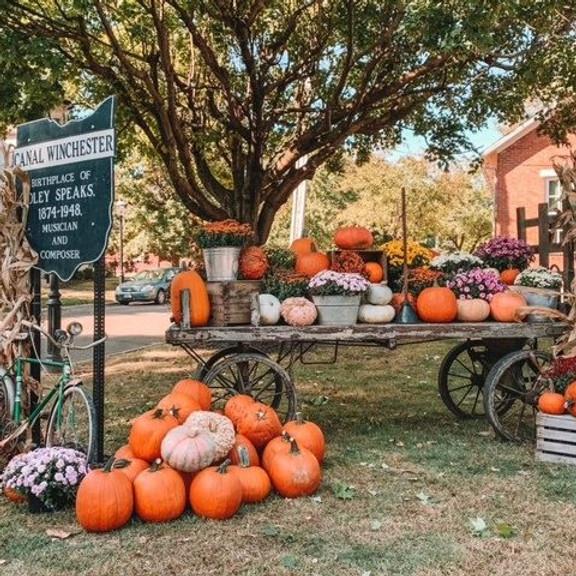 Harvesting History: A Founder's Day Celebration