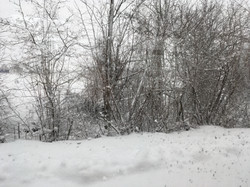 Winter Journey Munich 2019