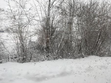 "More ""Winter Journey"" inspiration"