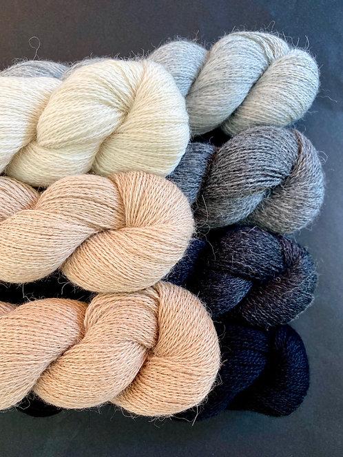 Baby Alpaka Lace, naturbelassen, von Kremke Soul Wool