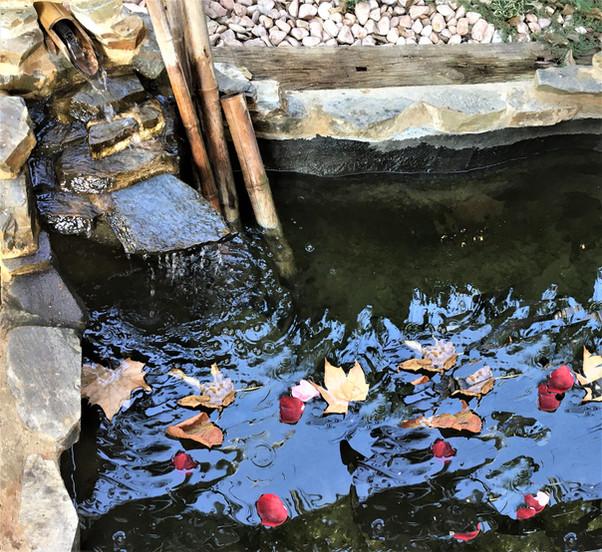 El estanque en Otoño