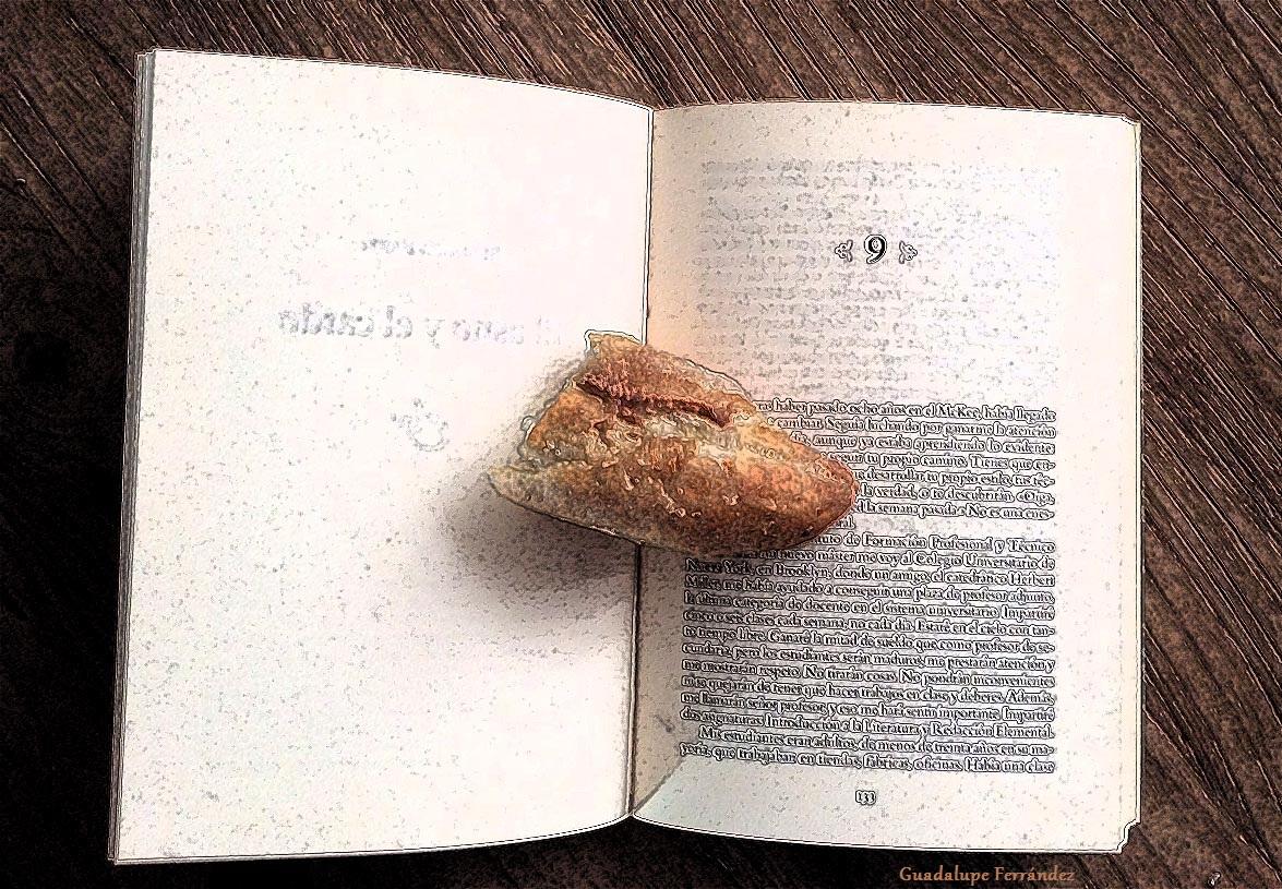 Resultado de imagen de medio pan y un libro