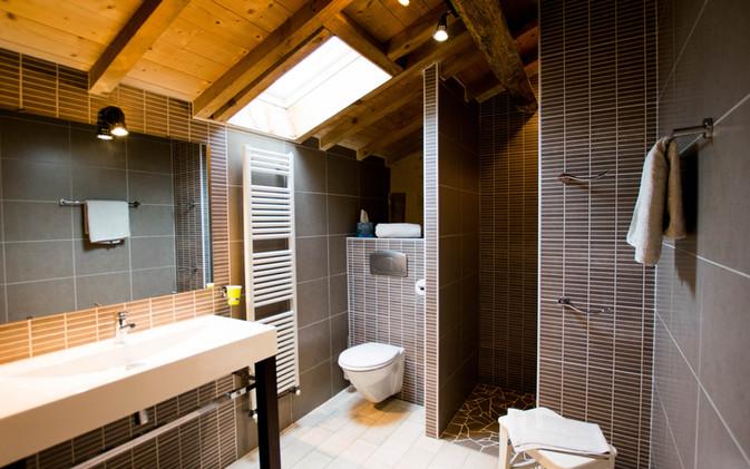 Adrien bathroom with shower