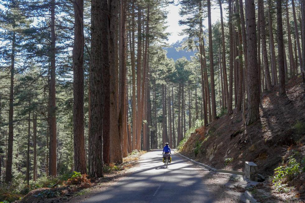 cyclotourisme-corse-centre.jpg