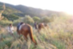 Randonnée-chevaux-corse