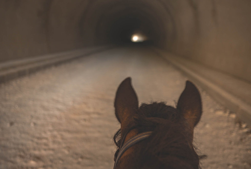 horseback-riding-tunnel.jpg
