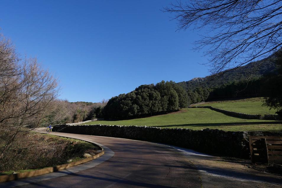 road-corsica