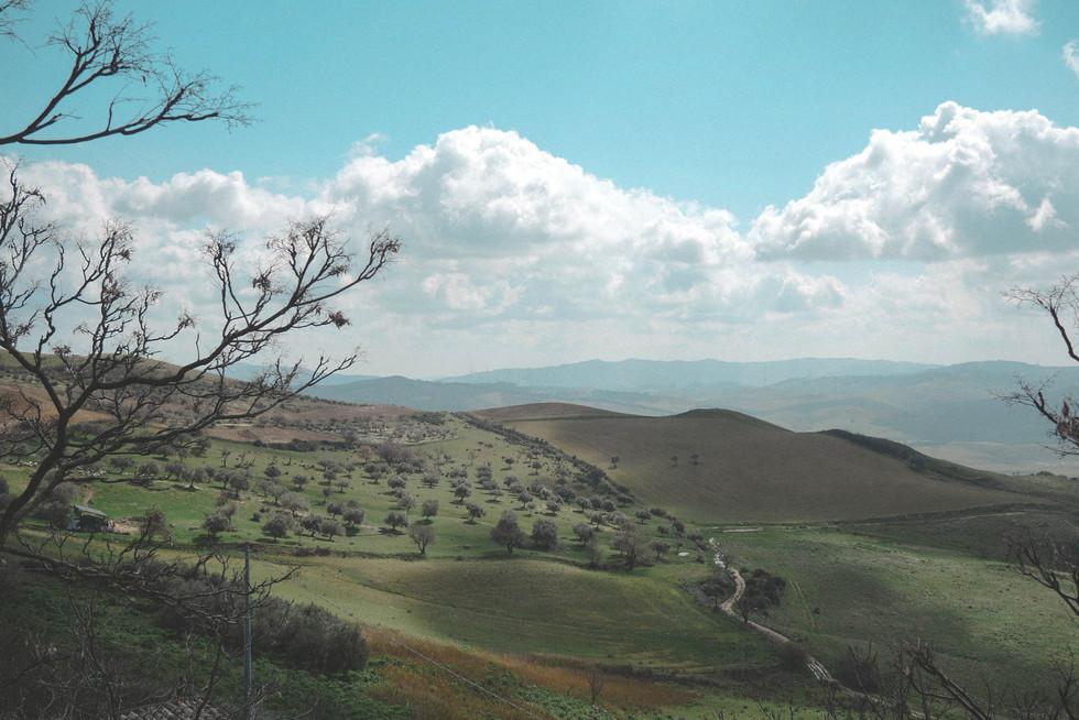 Landscape-sicily