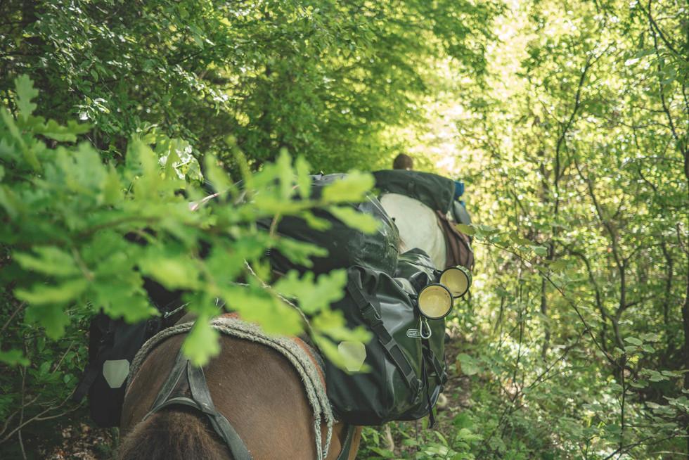horseback-riding-albania