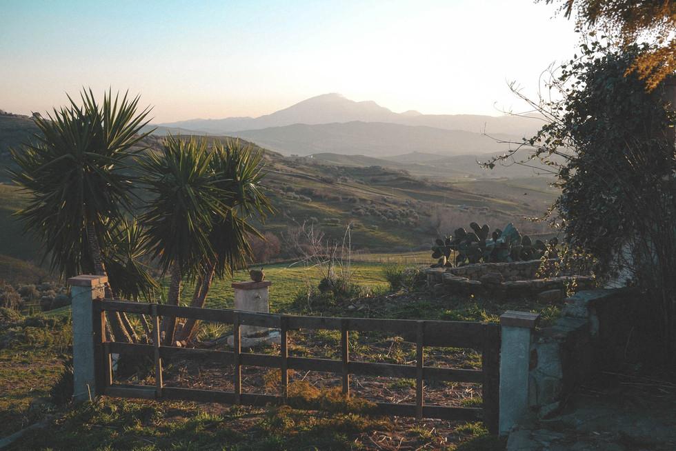 landscape-sicily-alia