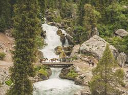 Day 434 – Shepherd's Way to Toktogul