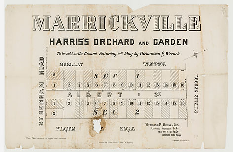 1877 Marrickville, Harris's orchard and