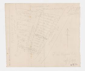 1900 Carrards Estate, Marrickville - Pet