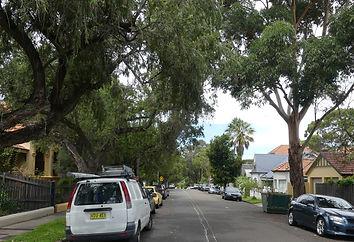 Rosedale Street Streetscape.jpg