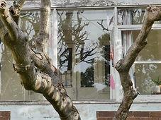 No 5 Haig Avenue Five Verandah Doors Sid