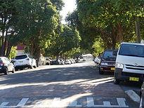 Harnet Avenue.JPG
