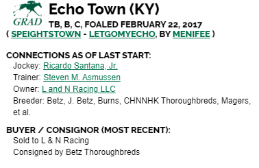 ECHO TOWN CONNECTIONS.png