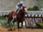 HORSE_RACING_Tiz_the_Law_Belmont_Stakes_