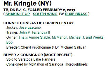 MR KRINGLE CONNEC TIONS.png
