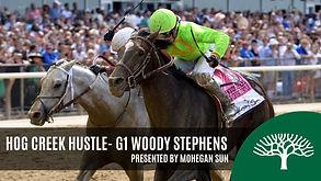 wwoody stephens stakes 2019.jpg