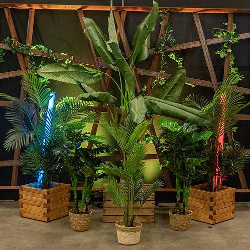 Kunstplanten set large