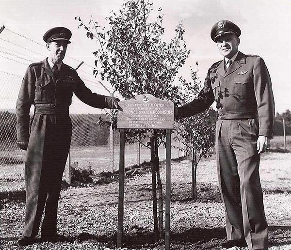 Tree Planting at Greenham Common