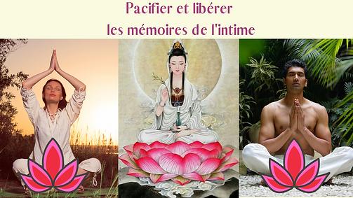 Pacifier_et_libérer_les_mémoires_de_l'