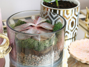 How To Reuse Your Candle Jars