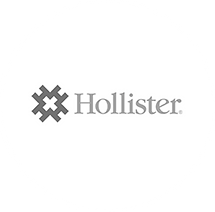 Hollister2.png