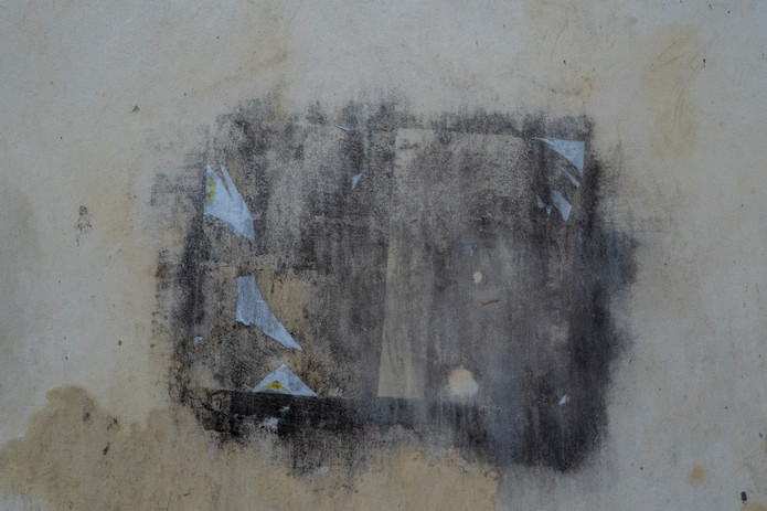 The Walls / 022