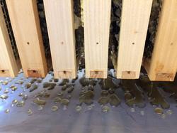 Extracting Raw Honey