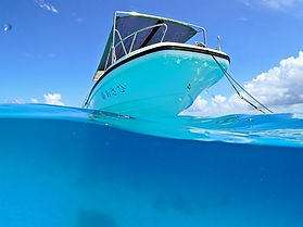 シュノーケル | Marlin | 日本 | マーリン | 八重干瀬 | ヤビジ | 宮古島 | スキンダイビング | 素潜り