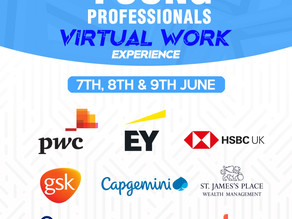 The Young Professionals Virtual Work Experience